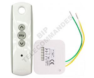 Kits Récepteur/Télécommandes SOMFY Lighting RTS